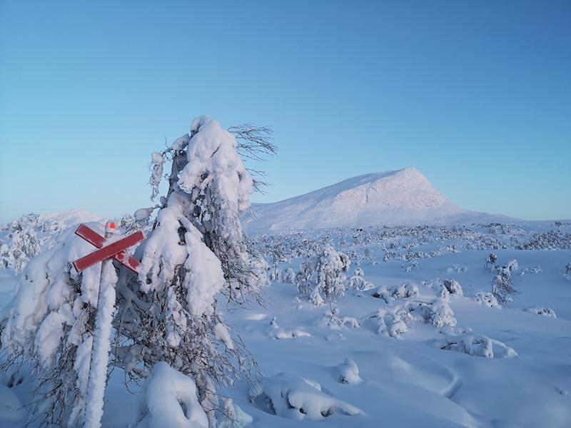 Lappland Fjäll