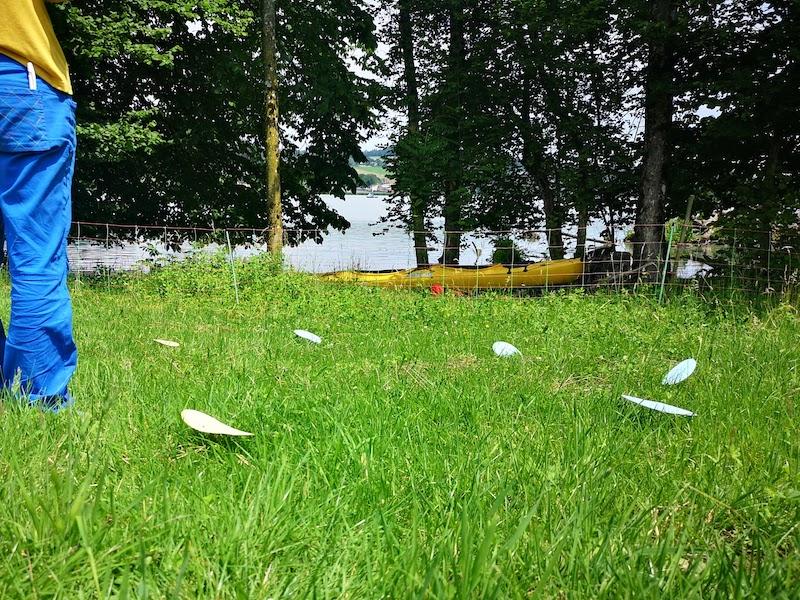 Natur Coaching mit dem Kanu